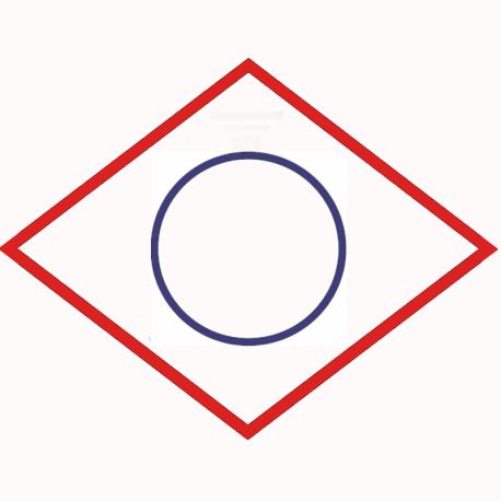 O-seal 01183301 for MWM TCG 2020