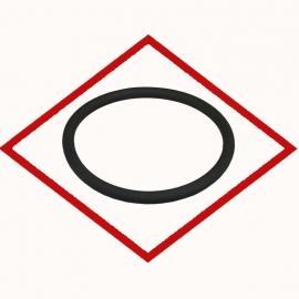 MWM 01181982 кольцевое уплотнение для TCG 2020, TBG 604