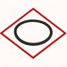 MWM 01181982 O-seal original TCG 2020, TBG 604